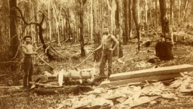 lumberjack ned.jpg